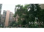 591社區-台北市大安區和平東路三段311巷